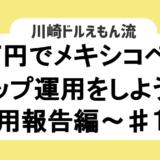 10万円でメキシコペソのスワップ運用をしよう!~運用報告編~